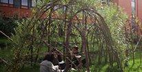 jardin des délices