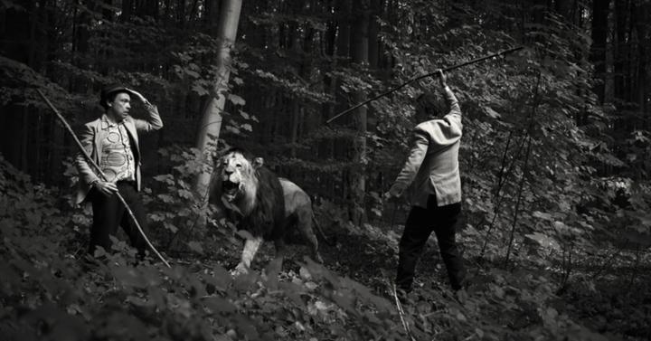 lion-belge-l.00417a.jpg