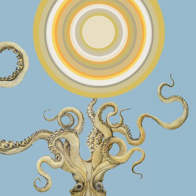 lina kusaite octopus